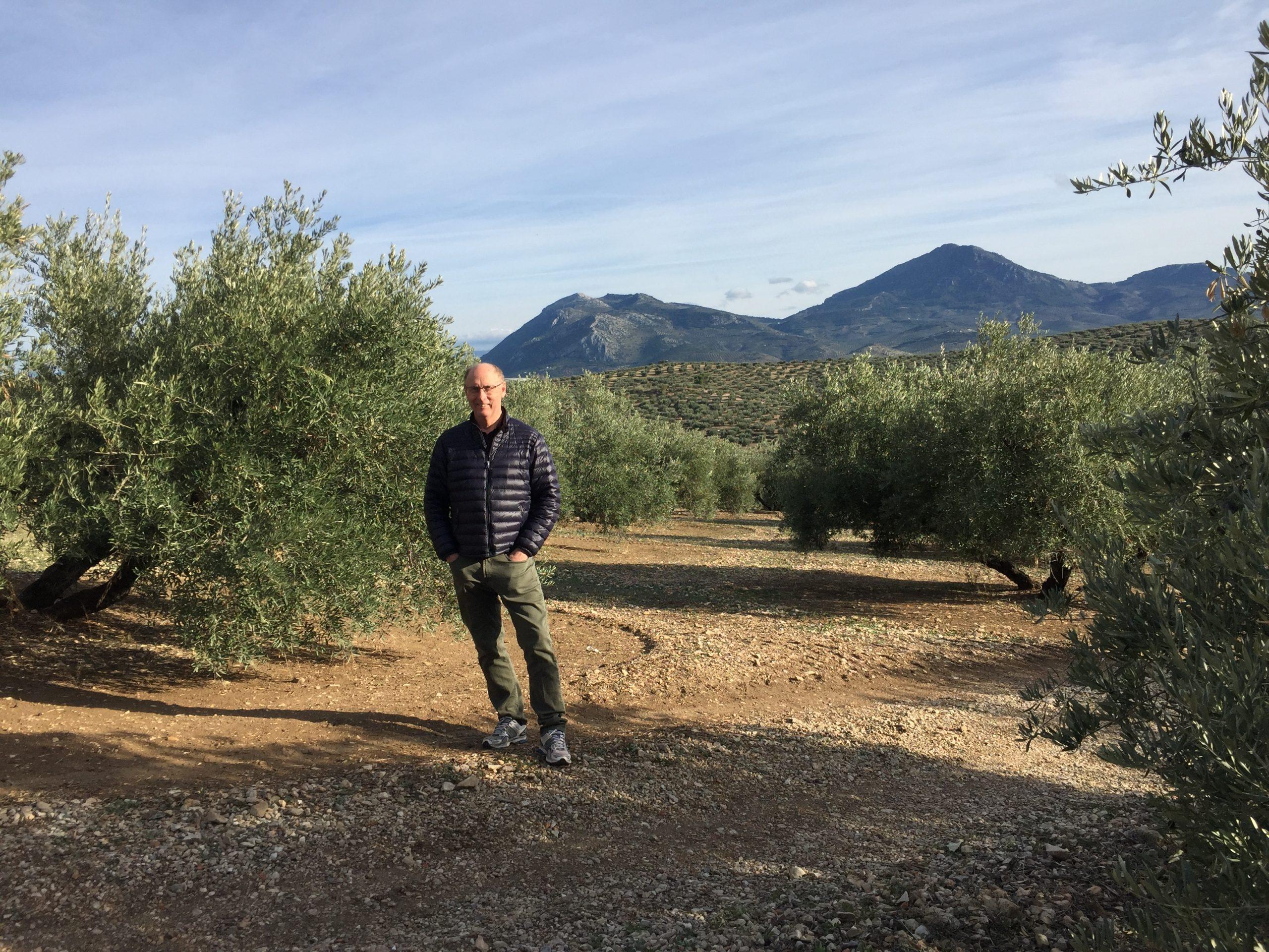 Huiles d'Olive Arsélia
