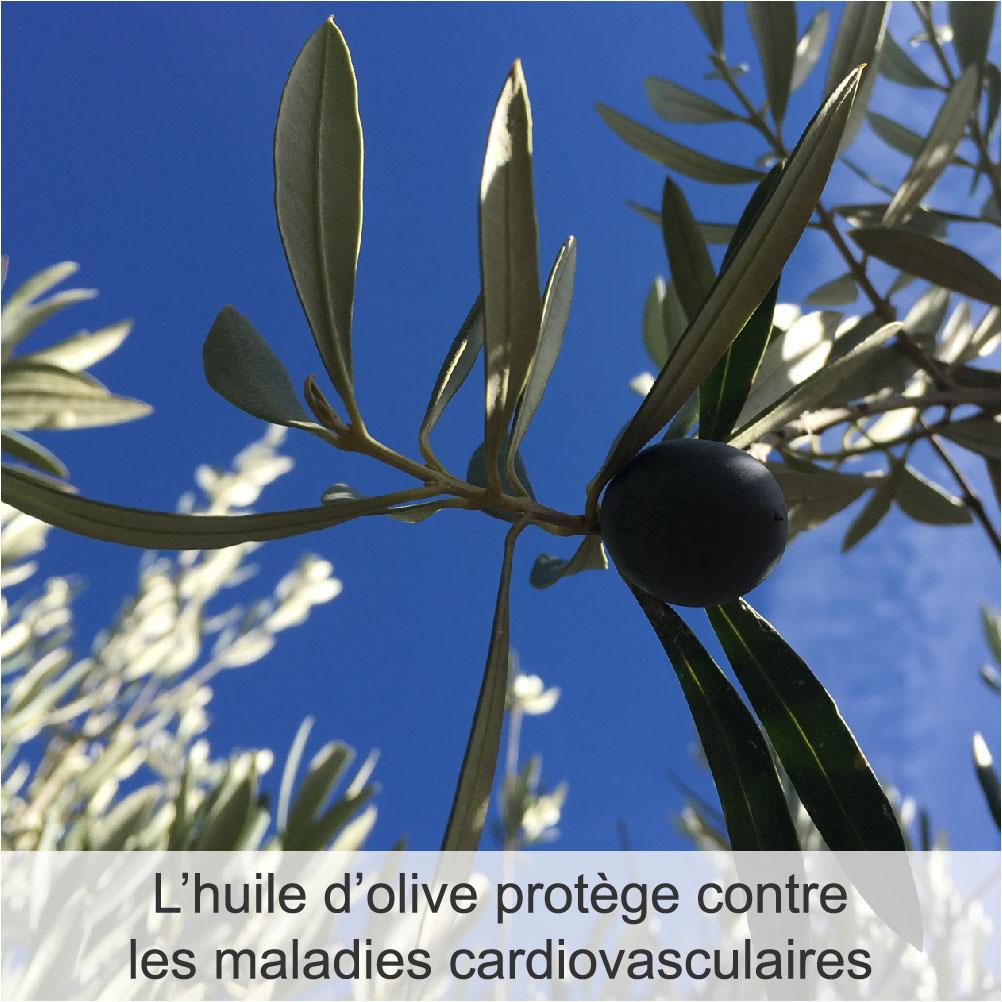 Maladies_Coeur_Bienfaits_Huiles d'Olive Arsélia-carousel